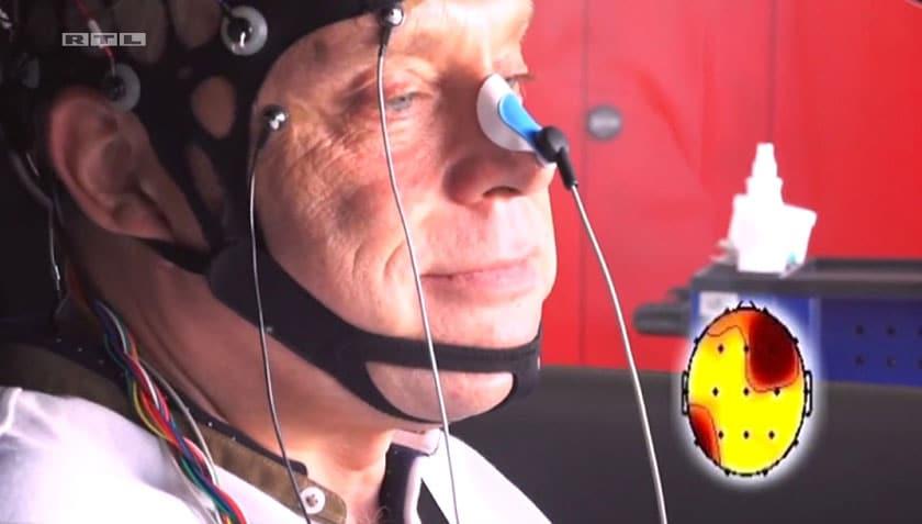 Gehirnquerschnitt: WLAN im Auto wirkt aufs Gehirn